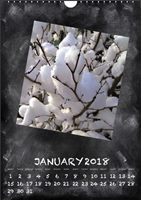 Picture of Spiral Calendar S16 White