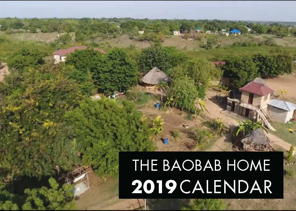Picture of Baobab Home 2019 A4 Spiral Booklet Calendar