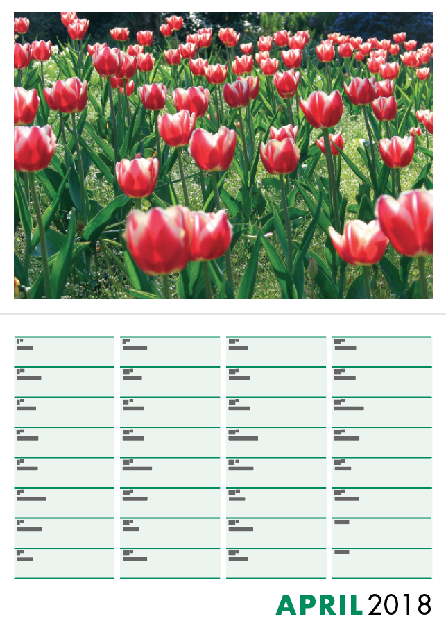 Picture of Booklet Calendar B02 Green