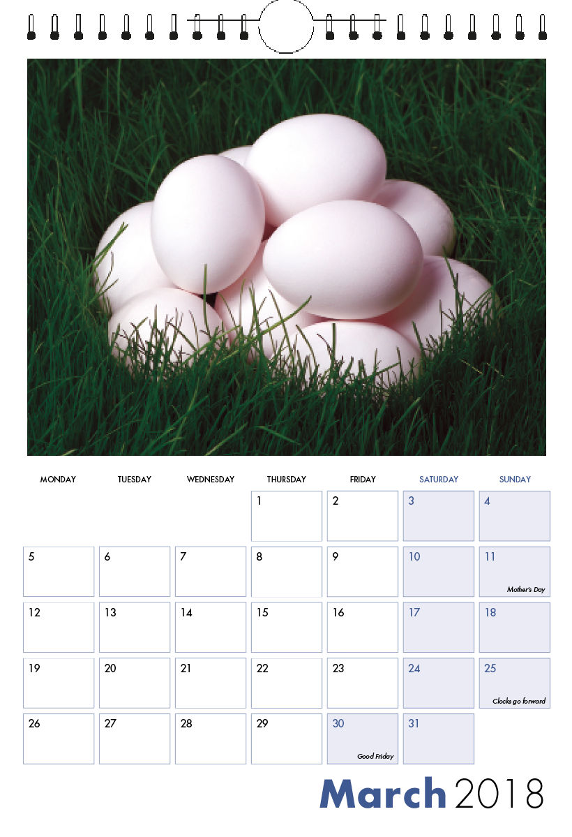 Picture of 001 - Test Spiral Calendar S11 Blue
