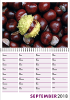 Picture of Spiral Booklet Calendar F02 Purple