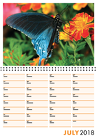 Picture of Spiral Booklet Calendar F02 Orange