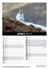 Picture of Mountain Hares 2019 A5 Desk Calendar