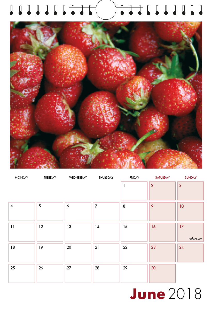 Picture of 001 - Test Spiral Calendar S11 Burgundy