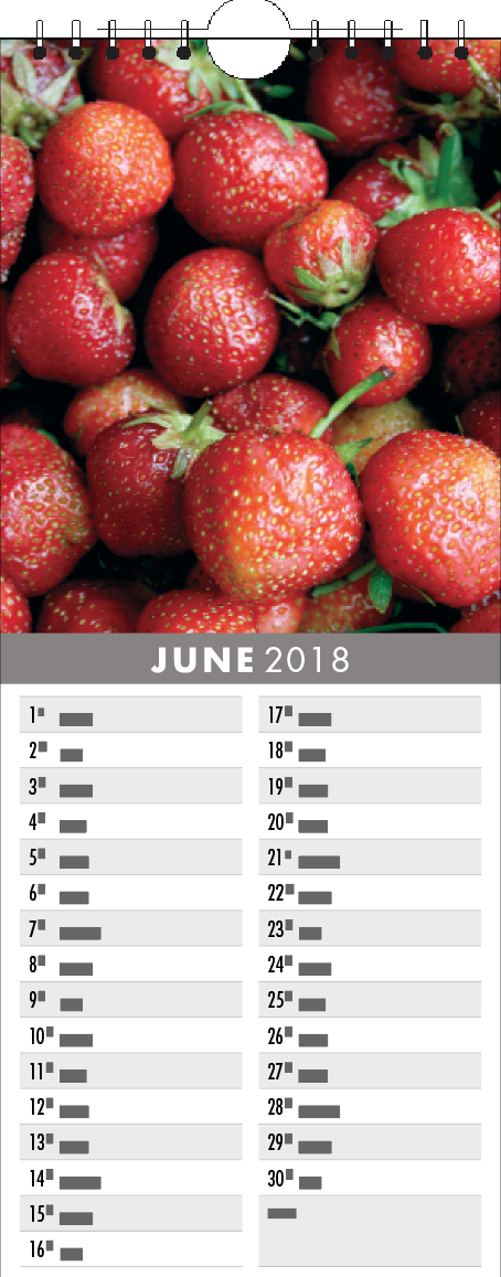 Picture of Kitchen Calendar K06 Grey