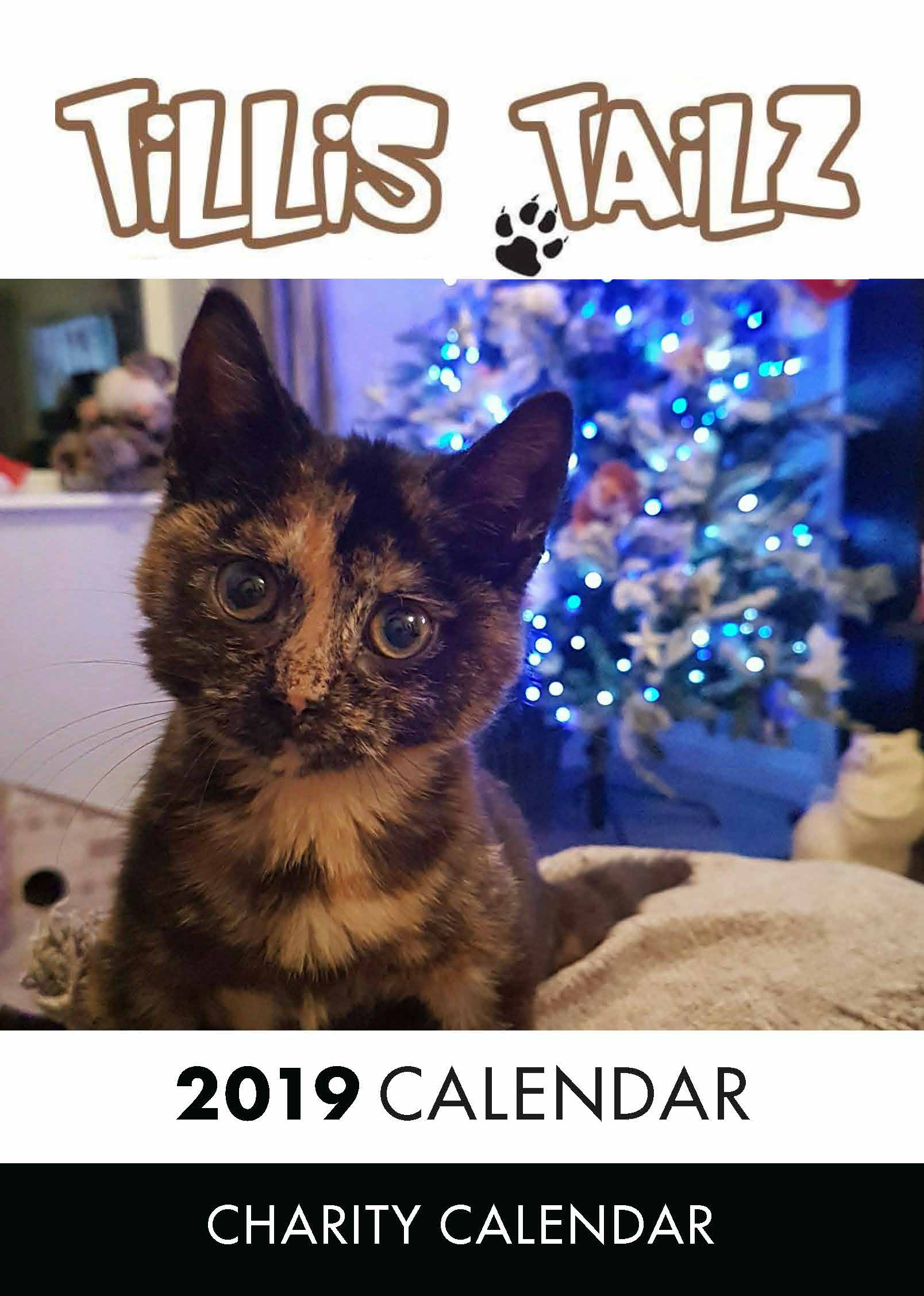 Picture of Charity Cat Calendar 2019 A3 Calendar