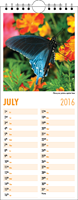 Picture of Kitchen Calendar K01 Orange