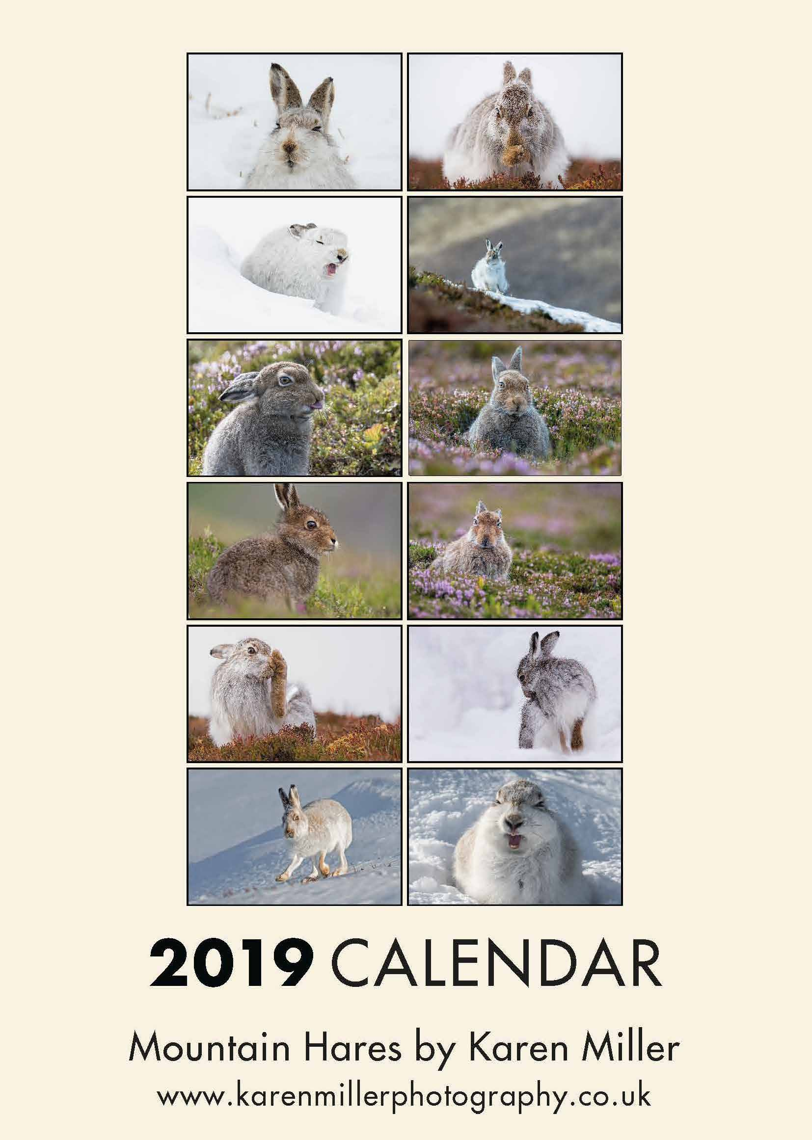 Picture of Mountain Hares 2019 A3 Calendar
