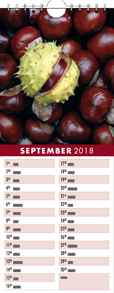 Picture of Kitchen Calendar K06 Burgundy
